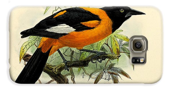 Small Oriole Galaxy S6 Case by J G Keulemans
