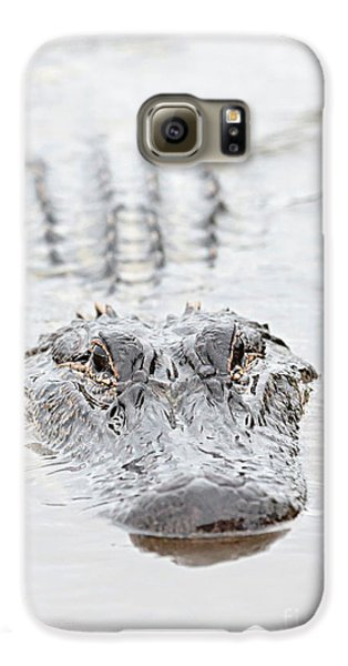 Sneaky Swamp Gator Galaxy S6 Case by Carol Groenen