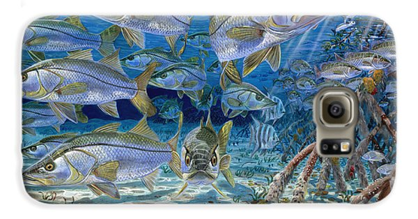 Snook Cruise In006 Galaxy S6 Case by Carey Chen