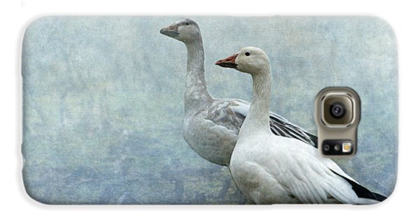 Snow Geese Galaxy S6 Case by Angie Vogel