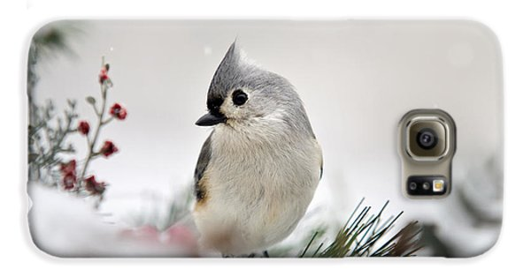 Snow White Tufted Titmouse Galaxy S6 Case by Christina Rollo