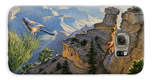 South Rim Morning Galaxy S6 Case by Paul Krapf