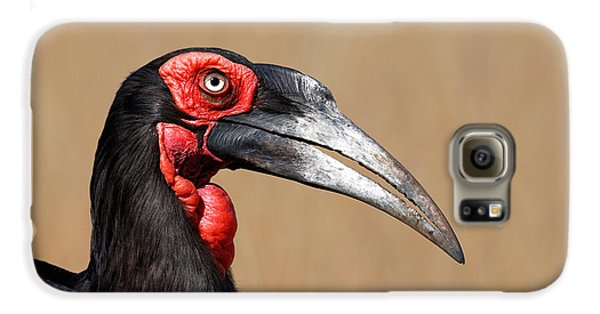 Southern Ground Hornbill Portrait Side View Galaxy S6 Case by Johan Swanepoel