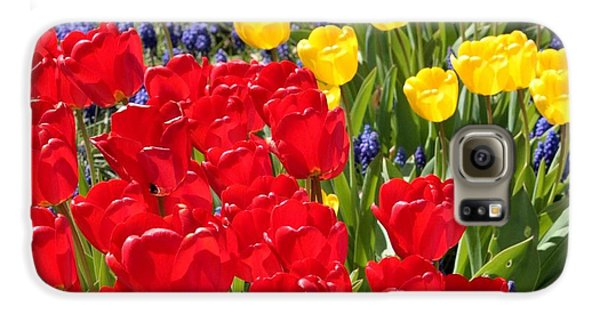 Spring Sunshine Galaxy S6 Case by Carol Groenen
