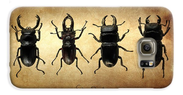 Stag Beetles Galaxy S6 Case by Mark Rogan