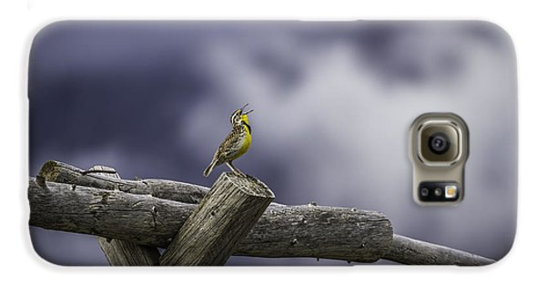 Stormy Weather And A Sweet Song Galaxy S6 Case by Thomas Young