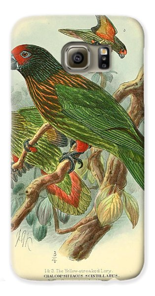 Streaked Lory Galaxy S6 Case by J G Keulemans