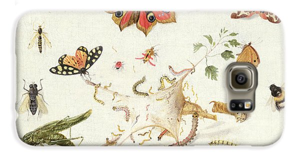 Study Of Insects And Flowers Galaxy S6 Case by Ferdinand van Kessel