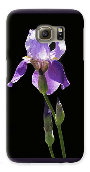 Sun-drenched Iris Galaxy S6 Case by Rona Black