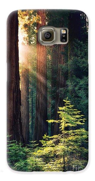 Sunlit From Heaven Galaxy S6 Case by Jane Rix
