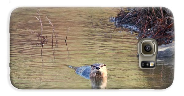 Sunrise Otter Galaxy S6 Case by Mike Dawson
