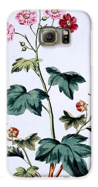Sweet Canada Raspberry Galaxy S6 Case by John Edwards