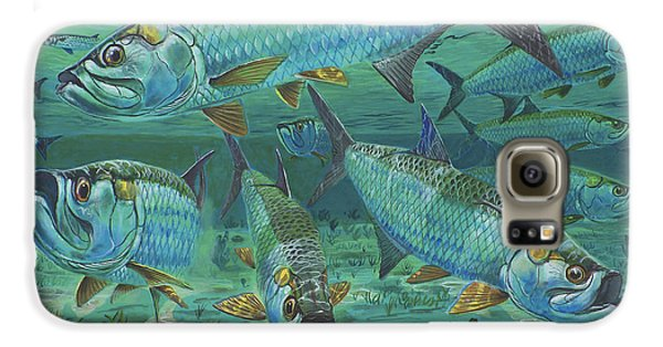 Tarpon Rolling In0025 Galaxy S6 Case by Carey Chen