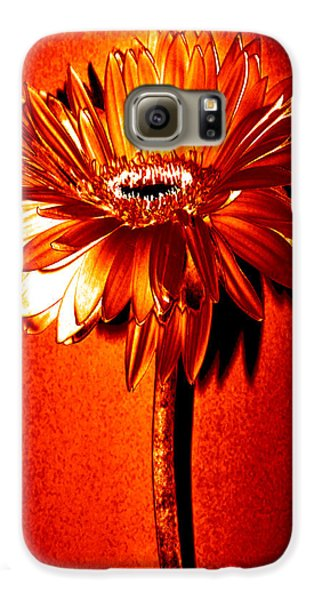 Tequila Sunrise Zinnia Galaxy S6 Case by Sherry Allen