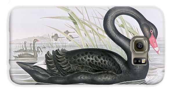 The Black Swan Galaxy S6 Case by John Gould