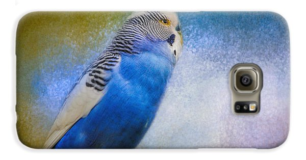 The Budgie Collection - Budgie 2 Galaxy S6 Case by Jai Johnson