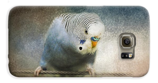 The Budgie Collection - Budgie 3 Galaxy S6 Case by Jai Johnson