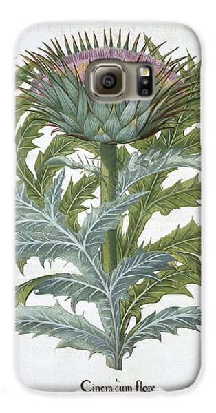 The Cardoon, From The Hortus Galaxy S6 Case by German School