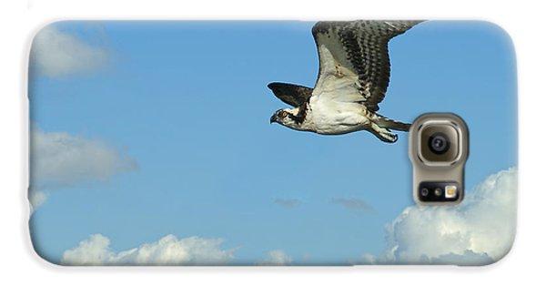 The Osprey 2 Galaxy S6 Case by Ernie Echols