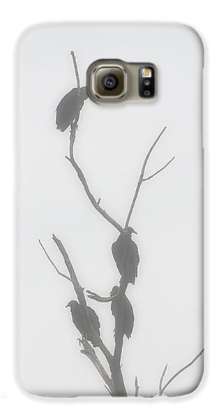 Their Waiting Four Black Vultures In Dead Tree Galaxy S6 Case by Chris Flees