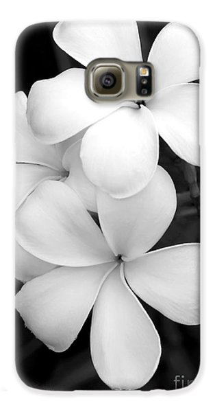 Three Plumeria Flowers In Black And White Galaxy S6 Case by Sabrina L Ryan
