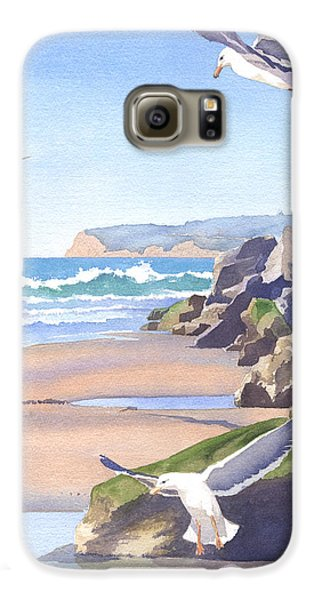 Three Seagulls At Coronado Beach Galaxy S6 Case by Mary Helmreich