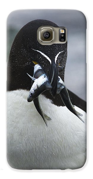 Feeding Time... Galaxy S6 Case by Nina Stavlund