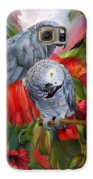 Tropic Spirits - African Greys Galaxy S6 Case by Carol Cavalaris