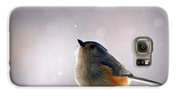 Tufted Titmouse Galaxy S6 Case by Cricket Hackmann