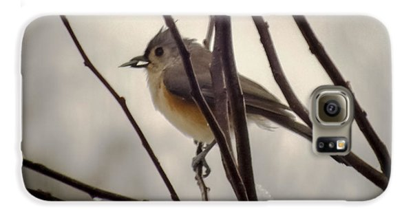 Tufted Titmouse Galaxy S6 Case by Karen Wiles