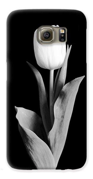 Tulip Galaxy S6 Case by Sebastian Musial