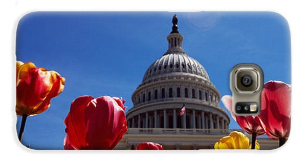 Tulips With A Government Building Galaxy S6 Case by Panoramic Images