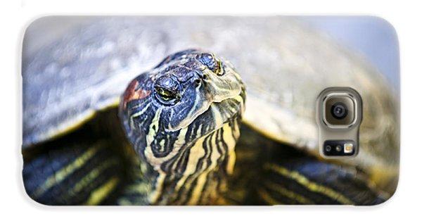 Turtle Galaxy S6 Case by Elena Elisseeva