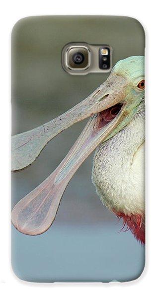 Usa, Florida, Fort De Soto Park Galaxy S6 Case by Jaynes Gallery
