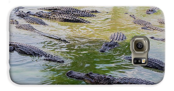 Usa, Florida, Ochopee Galaxy S6 Case by Charles Crust