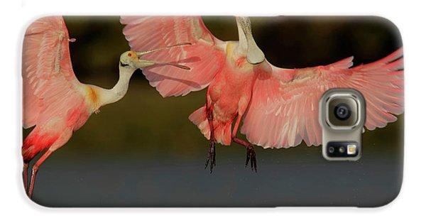 Usa, Florida, Tampa Bay, Alafaya Banks Galaxy S6 Case by Jaynes Gallery