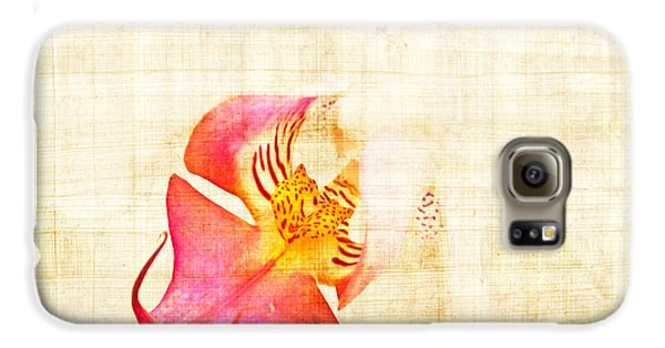 Vintage White Orchid Galaxy S6 Case by Delphimages Photo Creations