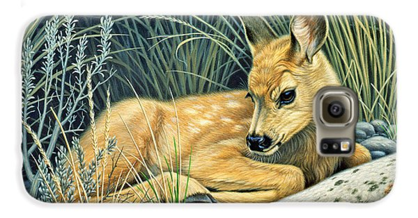 Waiting For Mom-mule Deer Fawn Galaxy S6 Case by Paul Krapf