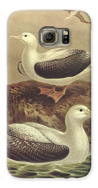 Wandering Albatross Galaxy S6 Case by J G Keulemans
