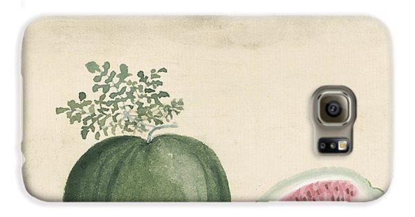 Watermelon Galaxy S6 Case by Aged Pixel