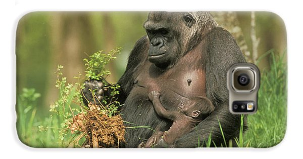 Western Gorilla And Young Galaxy S6 Case by M. Watson