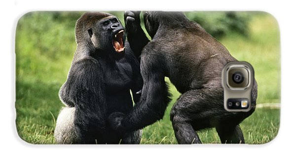 Western Lowland Gorilla Males Fighting Galaxy S6 Case by Konrad Wothe