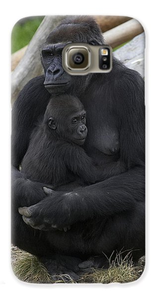 Western Lowland Gorilla Mother And Baby Galaxy S6 Case by San Diego Zoo
