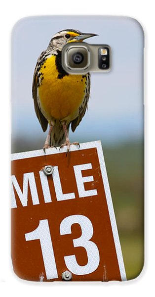 Western Meadowlark On The Mile 13 Sign Galaxy S6 Case by Karon Melillo DeVega