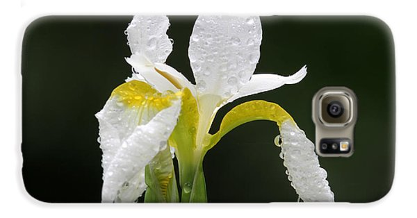 White Iris Galaxy Case by Juergen Roth