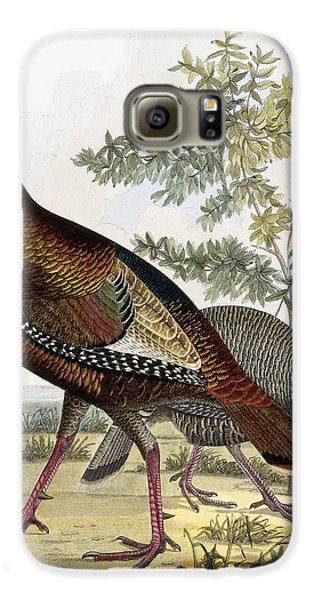 Wild Turkey Galaxy S6 Case by Titian Ramsey Peale