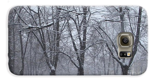Wintry Galaxy S6 Case by Anna Yurasovsky