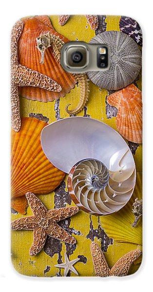 Wonderful Sea Life Galaxy S6 Case by Garry Gay