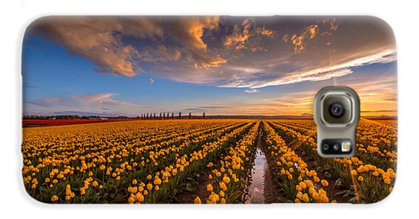 Yellow Fields And Sunset Skies Galaxy S6 Case by Mike Reid
