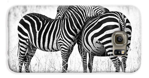 Zebra Love Galaxy S6 Case by Adam Romanowicz